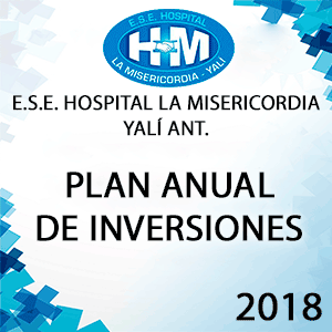 Plan Anual de Inversiones 2018